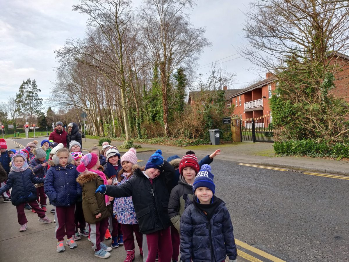 Rooms 5 and 6 go on a Local Tour