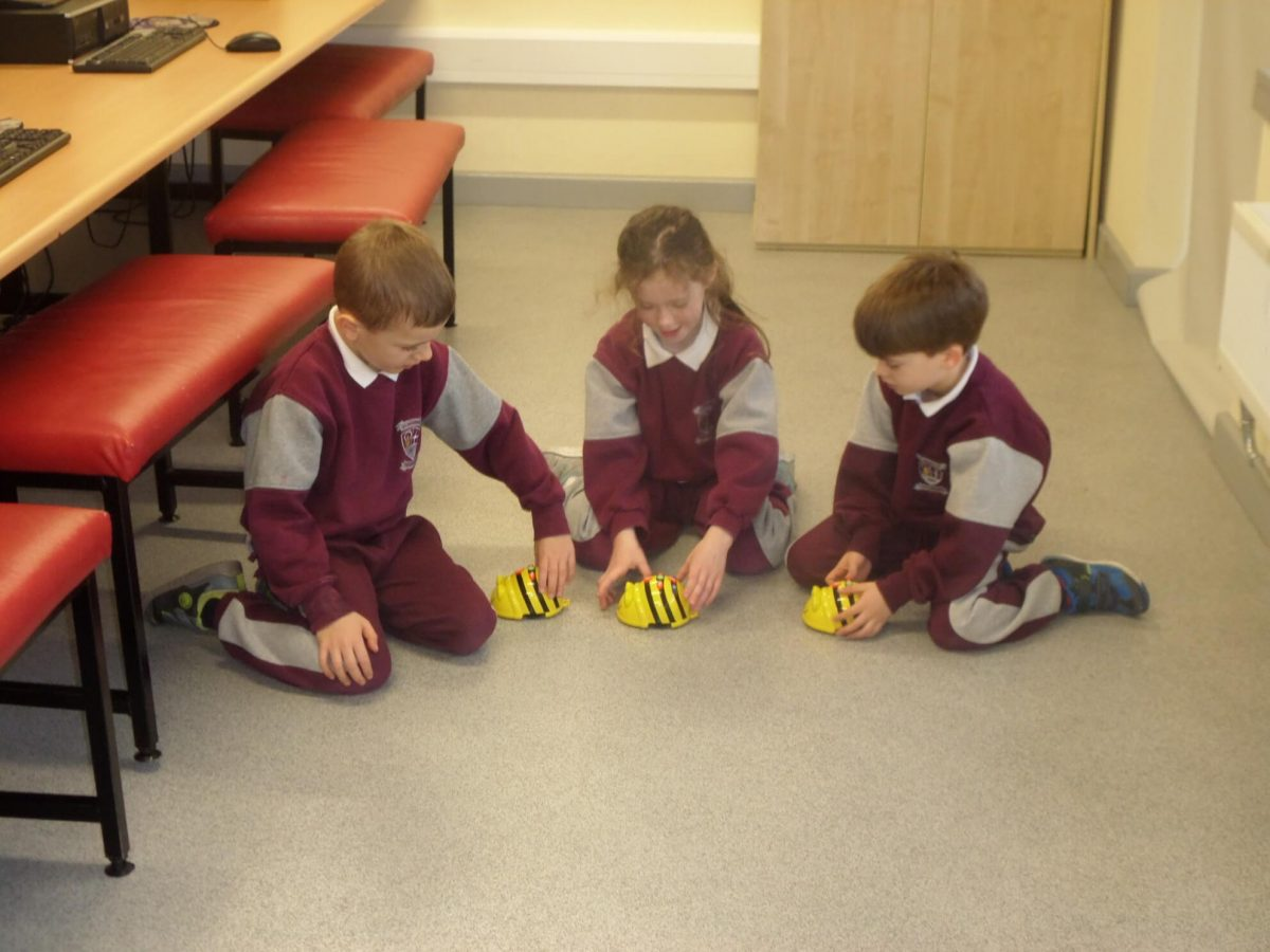 Bee Bot Challenges – Senior Infants Mr. O'Reilly
