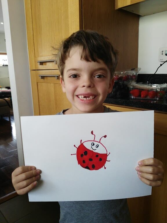Learning about ladybirds in Junior Infants