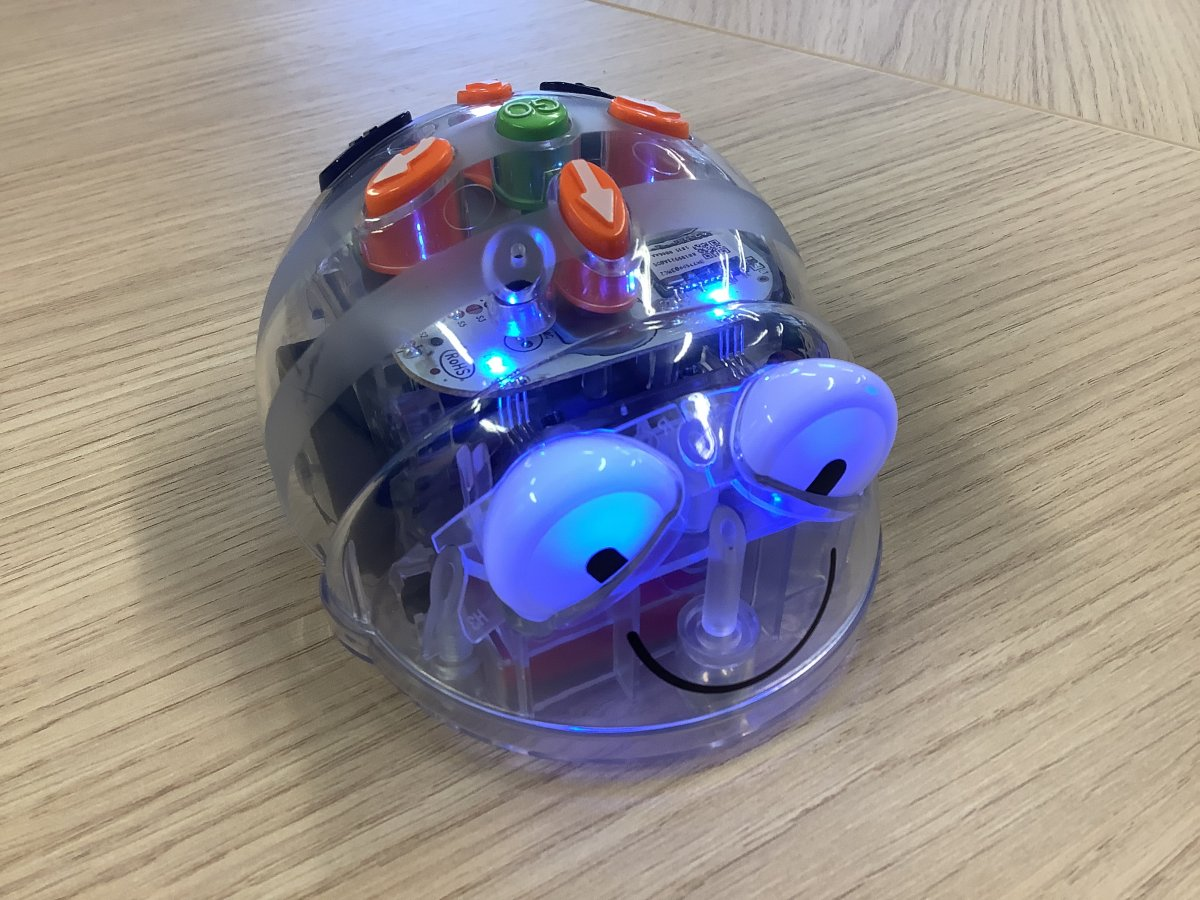 Blue Bot coding in 2nd class