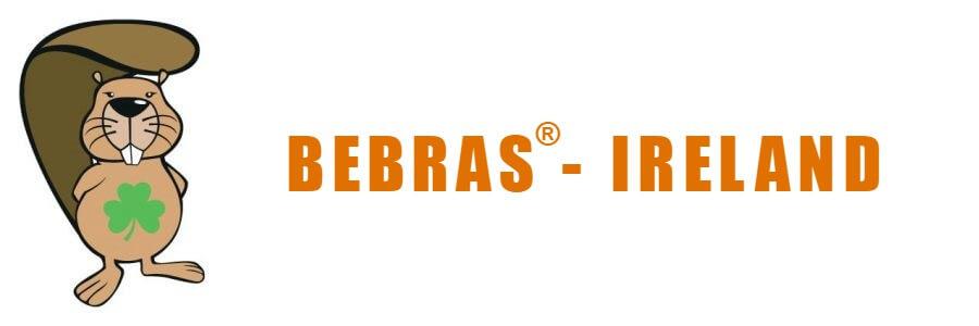 Bebras challenge finalist in 4th class